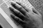 traducere biblia