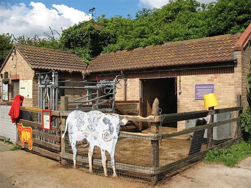 Newham City Farm  | Ferma urbana pentru familii / copiiLondra
